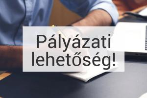 Pályázati felhívás II.